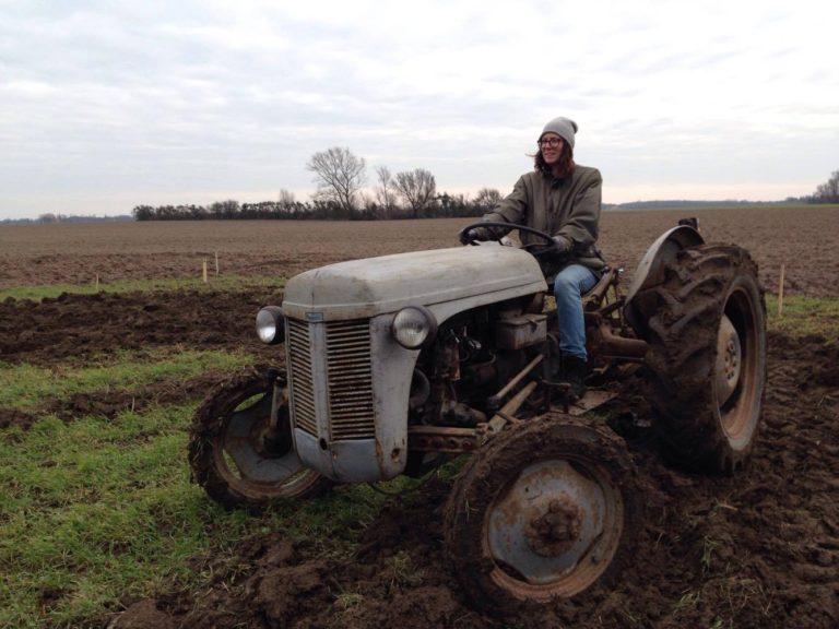 ferguson grå traktor