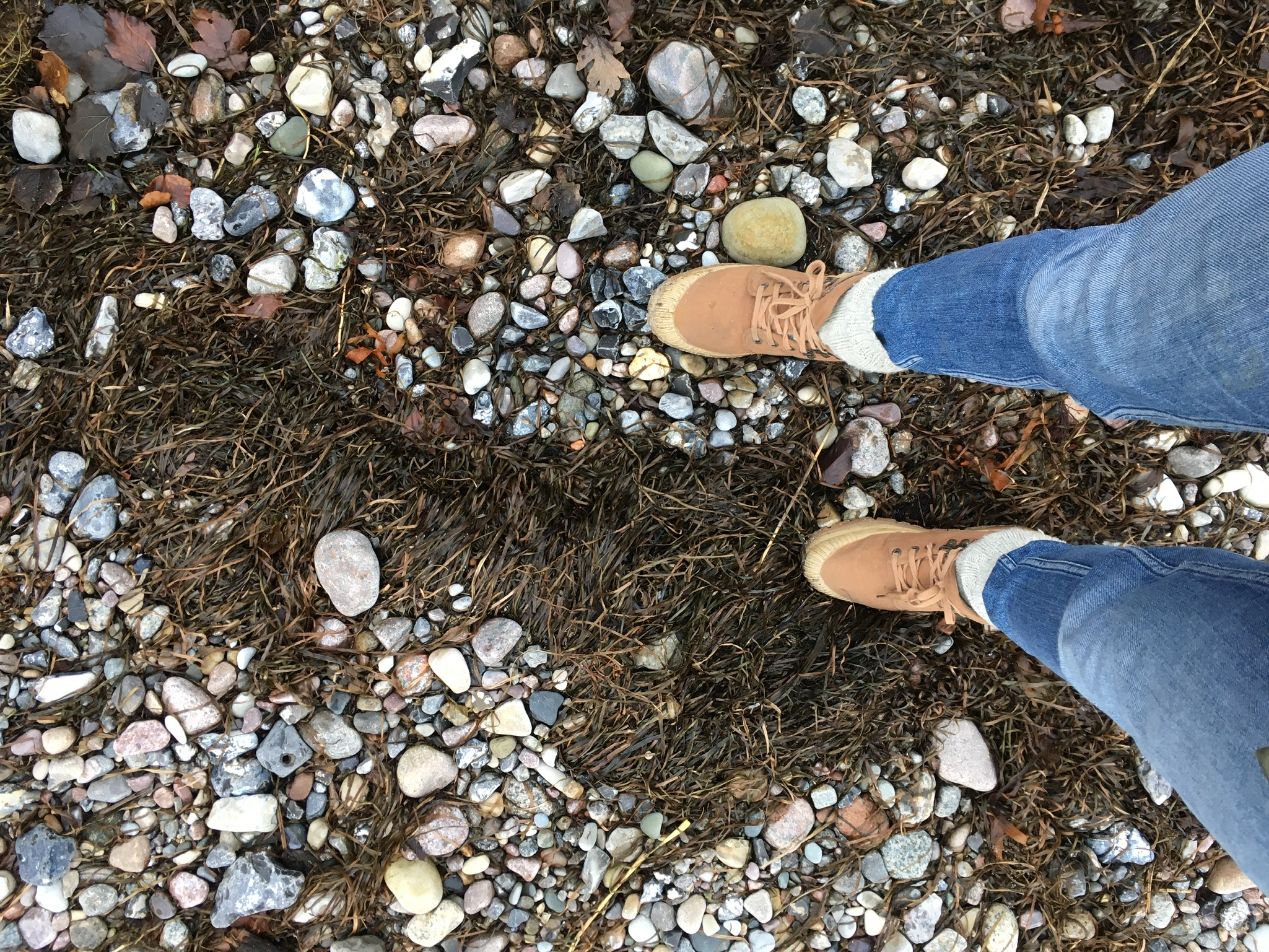 Gåtur på stranden